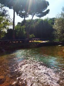Laghetto Parco
